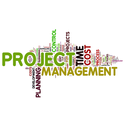 Think IT Project Management